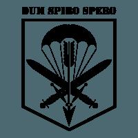 601. skupina speciálních sil
